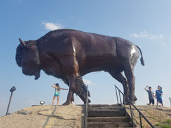 Manitou, the famous bison statue
